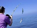 Диппер для рыбалки