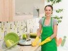depositphotos_65901563-stock-photo-happy-housewife