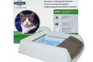 Аксессуары для котов - как выбрать лоток для туалета?